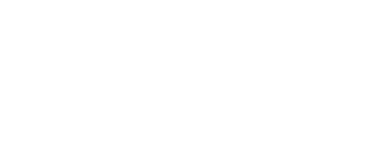 vlamings-coaching